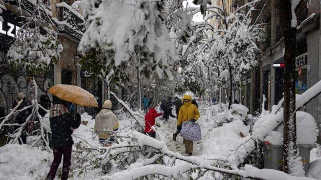 Árboles y parte de la iluminación navideña no han sobrevivido a la nieve en la calle Fuencarral en Madrid