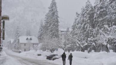 Bienvenido, invierno: alerta amarilla por heladas en el interior peninsular
