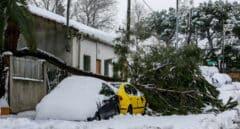 ¿Qué cubren los seguros en un temporal como el de Filomena?