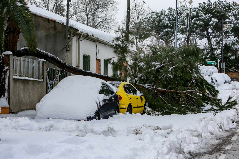 coche-nieve-arbol