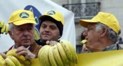 Plátano de Canarias regalará fruta de por vida al primer 'youtuber' que vuelva de Andorra