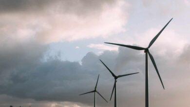 Repsol, Iberdrola, Endesa y Naturgy aguardan la irrupción de nuevos protagonistas por las subastas renovables