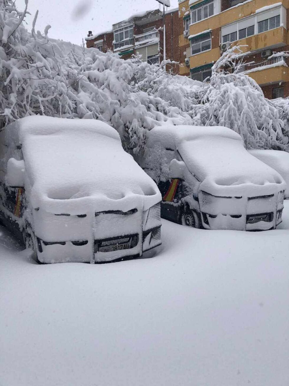 Furgones de la Policía Nacional cubiertos de nieve.