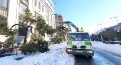 Operarios del Ayuntamiento de Madrid recogen, el lunes, ramas caídas tras el paso el fin de semana del temporal filomena.