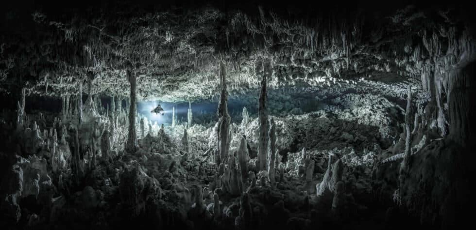 Fotografía submarina de la riviera Maya en México de Renee Capozzola