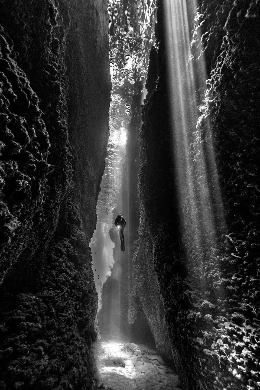 Fotografía submarina en Leru Cut en las Islas Salomón de Renee Capozzola