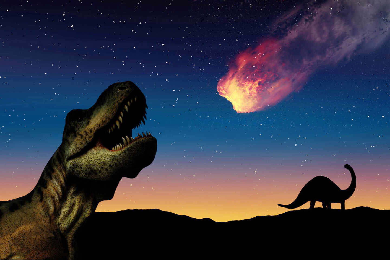 Chicxulub el meteorito que acabó con los dinosaurios