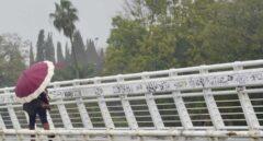 Un persona se protege de la lluvia y el viento caminando por la pasarela peatonal de la Cartuja en un día lluvioso y con fuertes rachas de viento en la provincia. En Sevilla