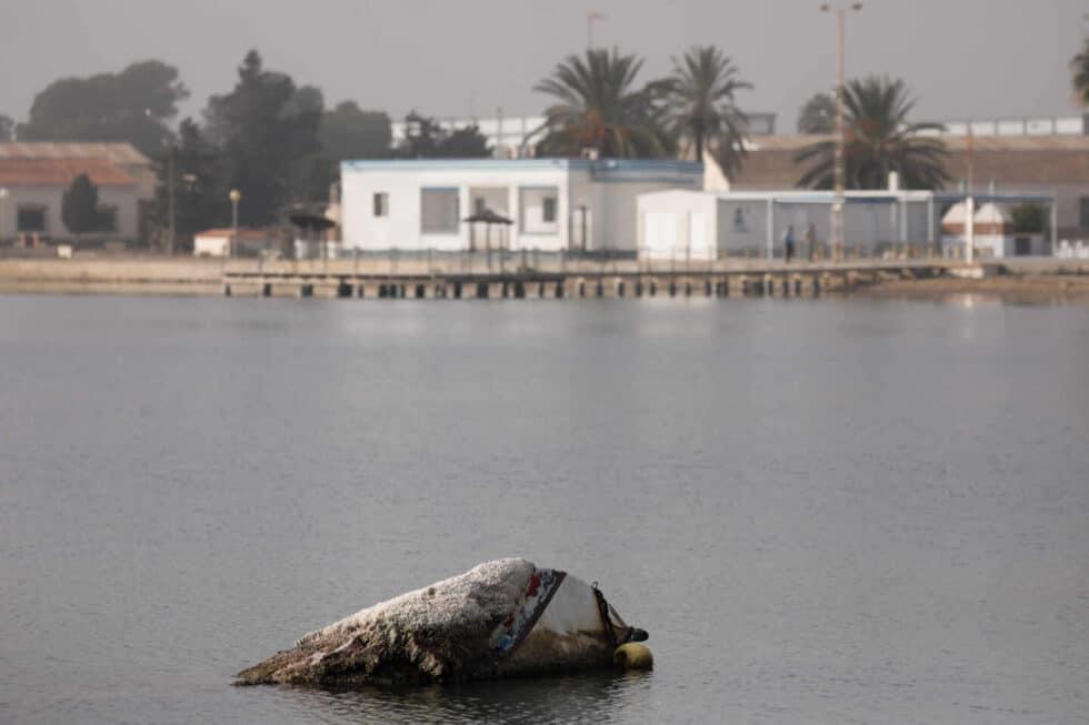 Un barco abandonado en el Mar Menor