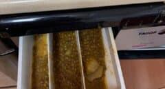 Las lentejas en la lavadora, la ocurrencia de una niña de 4 años a la que dejaron sola en la cocina