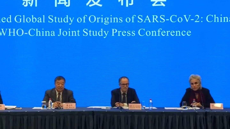 Expertos chinos y de la OMS ofrecen las conclusiones de la investigación sobre el origen del coronavirus