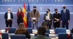 Gabriel Rufián, Néstor Rego, Mireia Vehí, Mertxe Aizpurua, Genis Boadella y Jaume Alonso-Cuevillas, en el Congreso.