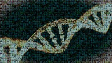 20 años del mapa del genoma humano: el hito con el que hoy combatimos al Covid