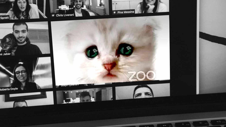 ¿Te cansa Zoom? No eres tú, la ciencia explica por qué agotan las videollamadas