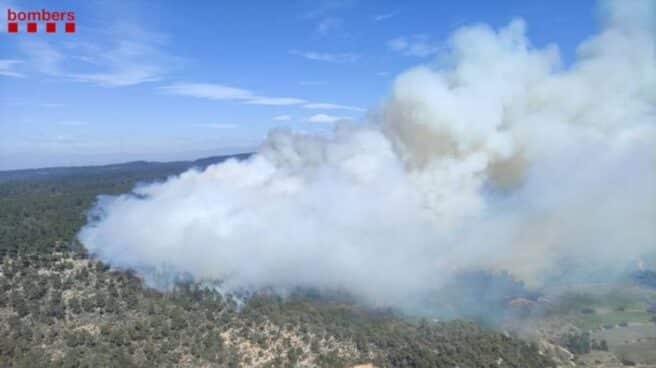 Un incendio forestal en la provincia de Tarragona activa 30 dotaciones de los Bomberos