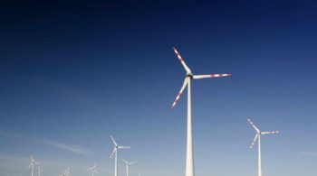 CO2 Revolution, Reby y Revolución Limo, las startups más sostenibles