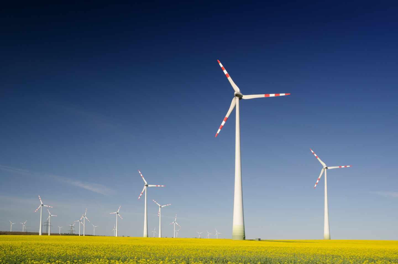 Una planta de energía eólica