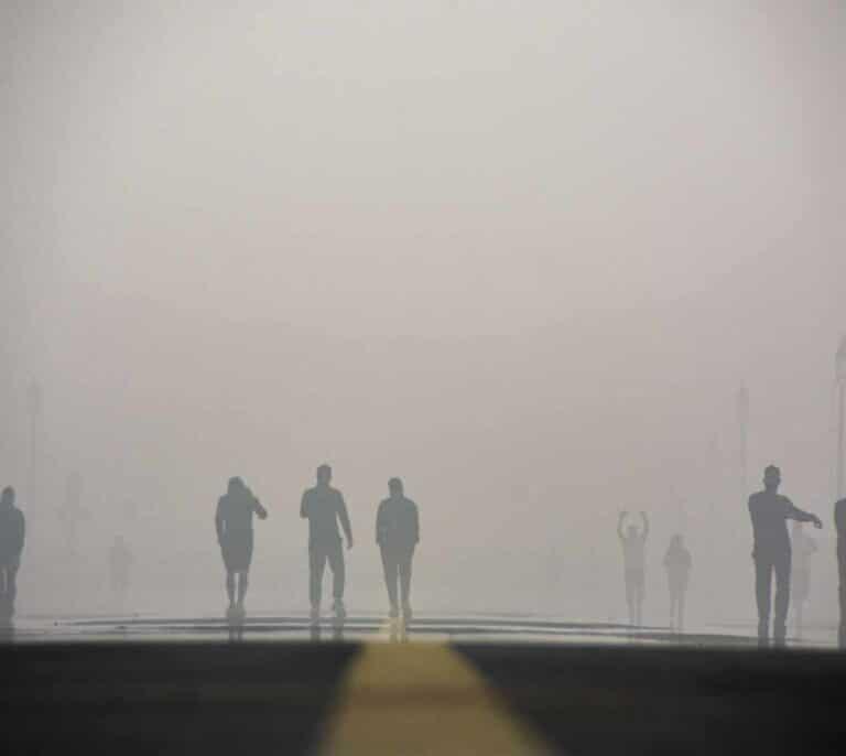 La contaminación podría disminuir el tamaño del pene, según un estudio