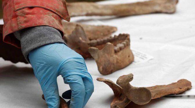 El Hombre de Loizu tiene más de 11.700 años: hallazgo excepcional en Navarra
