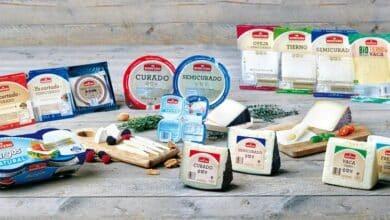 Los 4 quesos irresistibles de Lidl premiados internacionalmente por menos de 3 euros