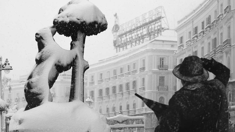 Las mejores fotografías de la nevada histórica