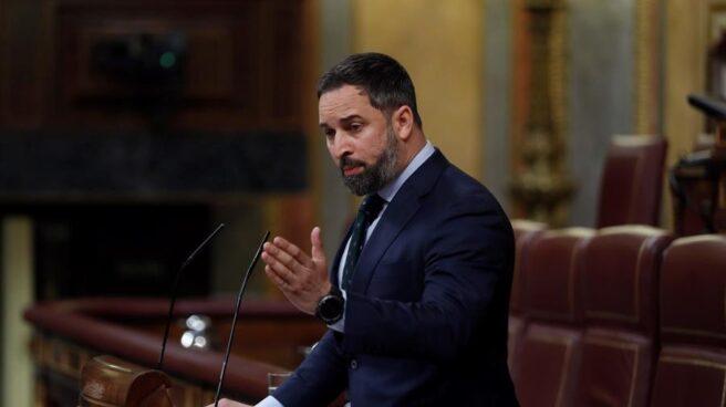 Santiago Abascal, durante una sesión de control al Gobierno.