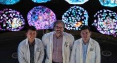 Científicos crean un modelo de embrión humano a partir de células de la piel