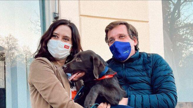 Almeida y Díaz Ayuso posan con Bolbo, el perro de la presidenta de la Comunidad de Madrid.