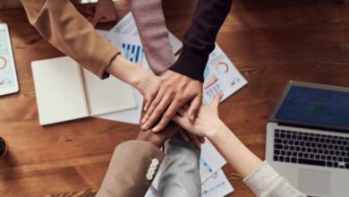 La importancia de la diversidad en el empleo
