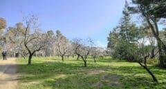 Así será la primavera meteorológica en España