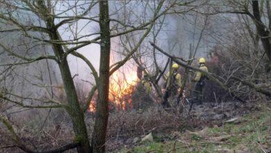 Asturias, en situación de emergencia por la proliferación de incendios forestales
