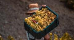 El bloqueo australiano a Huawei abre la puerta al vino español en China