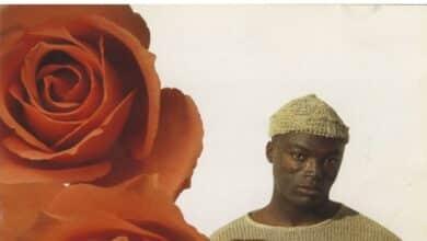 Un beso y una rosa