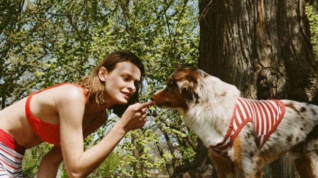 Imagen de la campaña publicitaria de Zaqra con la nueva colección para perros de Inditex