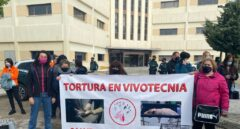 La Fiscalía investiga a Vivotecnia en Madrid por presunto maltrato animal