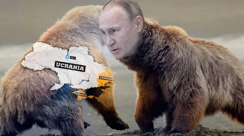 Imagen de un montaje de Putin en un oso pardo atacando otro oso que representa Ucrania