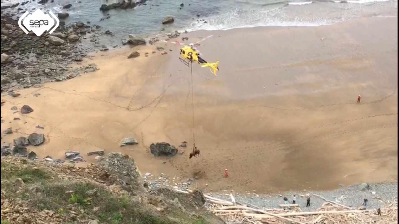 Imagen del toro siendo rescatado por el helicóptero