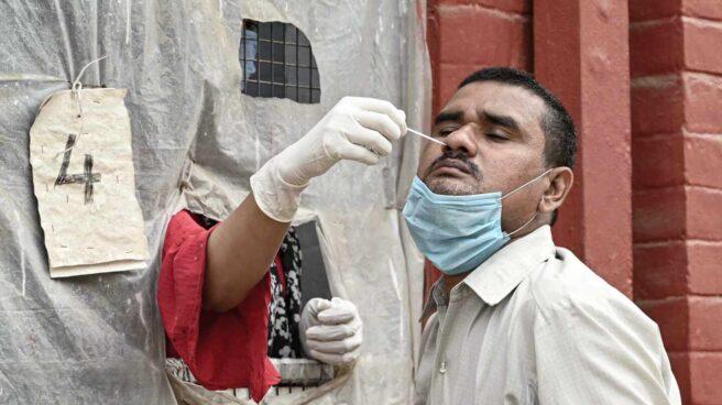 Un sanitario realiza una prueba PCR de detección de coronavirus coronavirus a un individuo en Prayagraj (India).
