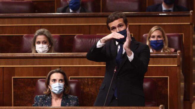El líder de la oposición, Pablo Casado, en el Congreso.