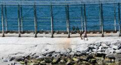 Escrivá confirma que ya han comenzado devoluciones de inmigrantes a Marruecos