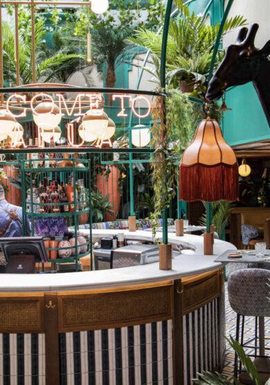 Papúa Colón: el fenómeno que nació del oasis hostelero de Madrid