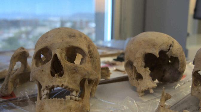 Científicos buscan dónde nació Colón en el ADN de sus huesos