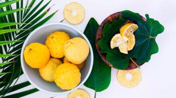 Alimentos beneficiosos para la salud y belleza