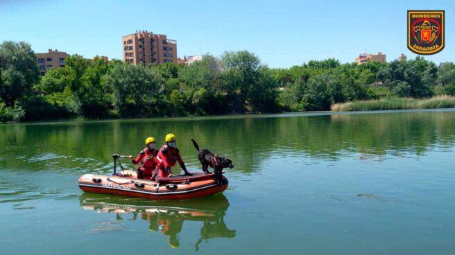 Bomberos de Zaragoza realizan tareas de búsqueda