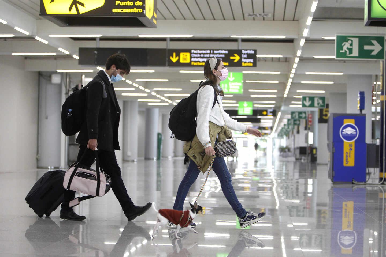 Dos turistas en el aeropuerto de Palma (Baleares) con un perrito.