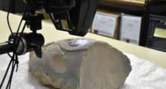 Analizan una pieza de la época ibera hallada por un agricultor cerca de Elche