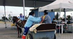 Una mujer de Lepe se vacuna contra el Covid en un carro tirado por una mula
