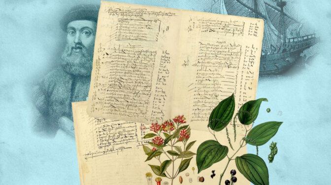 Los fármacos de la vuelta al mundo de Magallanes, un botiquín de hace 500 años