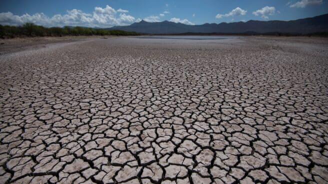 Vista general de las afectaciones por la sequía, el 15 de junio de 2021, en la comunidad de Rincón Colorado, en el municipio de General Cepeda, en Coahuila, México