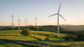 Innovación y compromiso social para una revolución verde